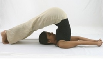 Weight Loss Yoga Course