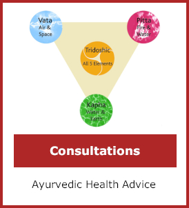 consultations category image