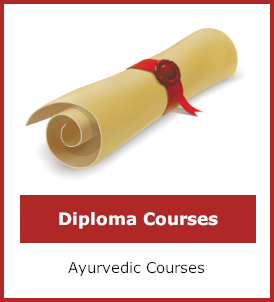 Diploma courses category image