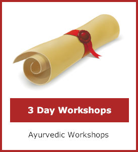 Three day workshops category image